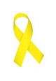 TROY Yellow Ribbon Campaign